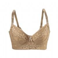 佩緹尚魅(PETAL_CHAUMET)尊貴奢華古銅色同款收副乳提胸文胸95D